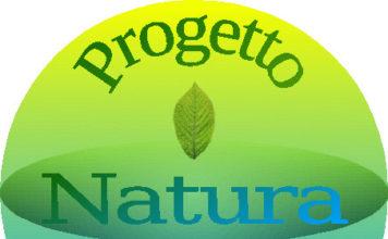 progetto-logo-pnv