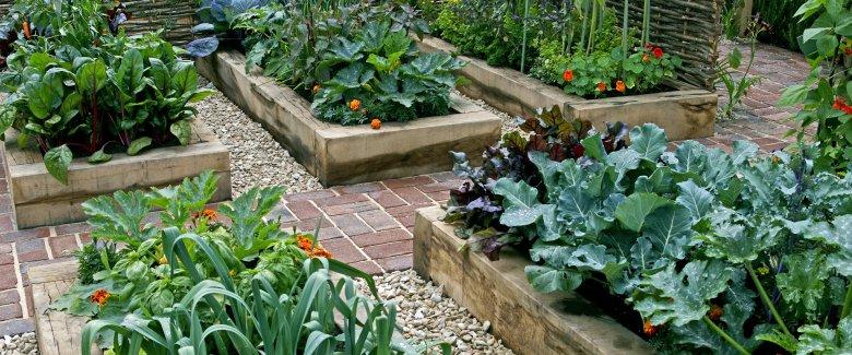 come preparare orto e giardino