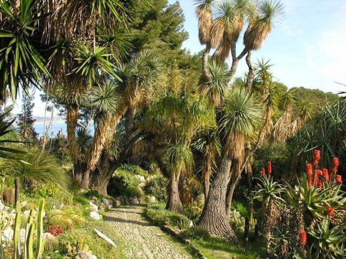 giardini esotici