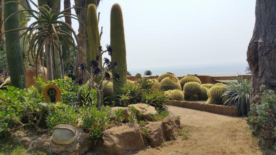 giardini esotici pallanca
