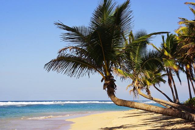 spiagge al mondo: Playa Bravo, Punta Cana