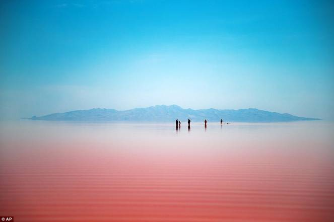 siccità in iran e il lago urmia si colora di rosa